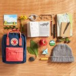Fjallraven-Save-the-Arctic-Fox-Mini-Kanken-Backpack-for-Everyday-0-6